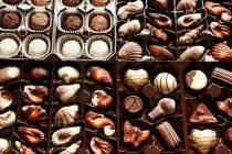 סדנת שוקולד – הפינוק שלכם לקיץ הקרוב